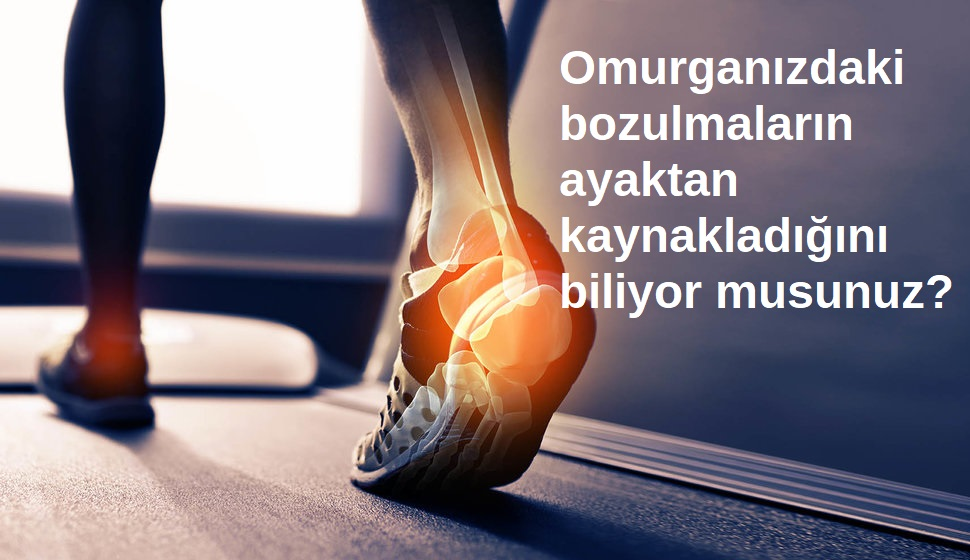 ayak omurga ilişkisi